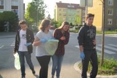 Cistilna akcija (13)