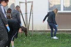 Cistilna akcija (7)