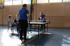 Medregijsko tekmovanje v namiznem tenisu za dekleta (3)