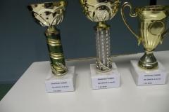 Nagradni sahovski turnir (3)