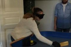 Medobčinsko društvo slepih in slabovidnih (10)