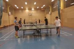 Namizni tenis (2)