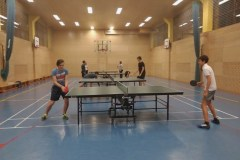 Namizni tenis (3)