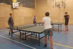 Namizni tenis (4)