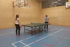 Namizni tenis (5)