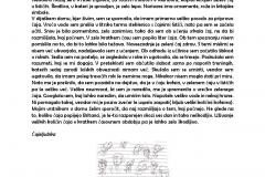 Dravski-vrtinci-page-005