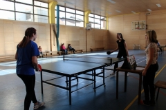 Medregijsko tekmovanje v namiznem tenisu za dekleta (4)