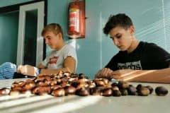 Priprave-na-kostanjev-piknik-1